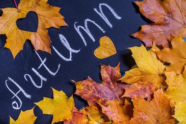 Folhas de outono amarelas sobre fundo negro lousa.