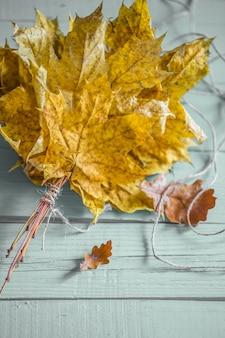 Folhas de outono bonitas no conceito de madeira outono