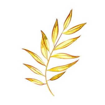 Folhas de outono coloridas bonitas isoladas no branco. ilustrações em aquarela.