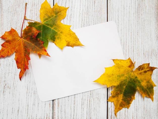 Folhas de outono coloridas com cartão