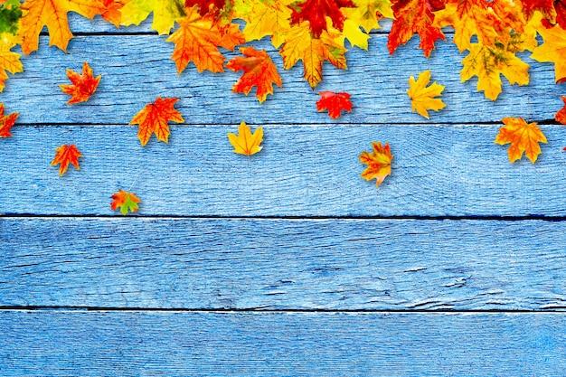 Folhas de outono coloridas em fundo de madeira