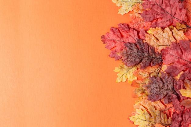 Folhas de outono coloridas na laranja