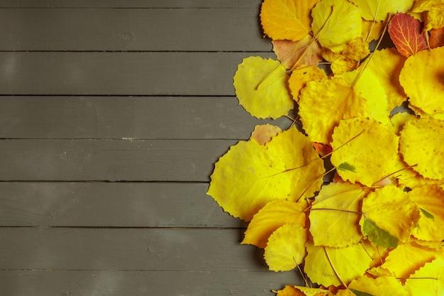 Folhas de outono coloridas sobre madeira com espaço de cópia