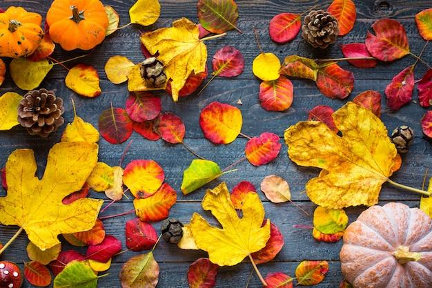 Folhas de outono coloridas sobre um fundo de madeira