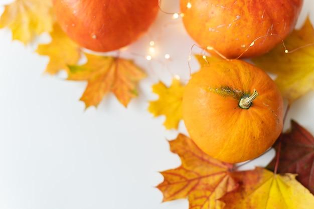 Folhas de outono com borda de abóbora na parte inferior, fundo bonito de outono. luzes piscando no fundo, lindo bokeh.