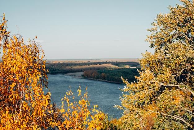 Folhas de outono douradas amarelas alaranjadas no fundo da água azul.
