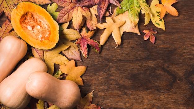 Folhas de outono e espaço de cópia de abóbora de manteiga