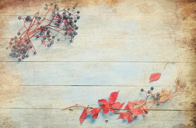 Folhas de outono e uvas bravas na mesa de madeira