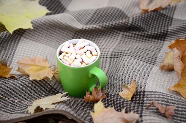 Folhas de outono e xícara de café fumegante quente encontra-se no xadrez xadrez ao ar livre