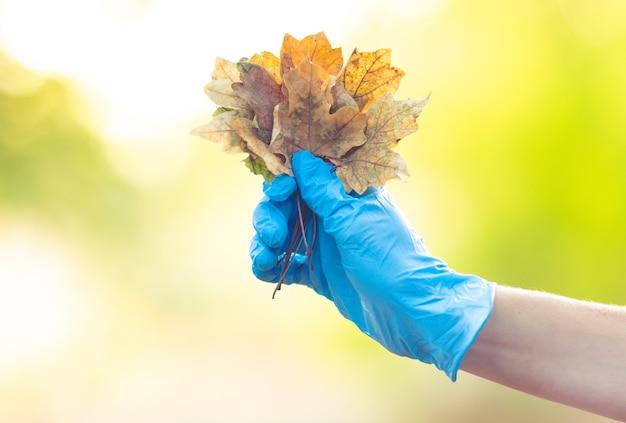 Folhas de outono em close-up de mão. conceito de outono.