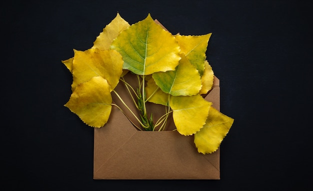 Folhas de outono em envelope vermelho