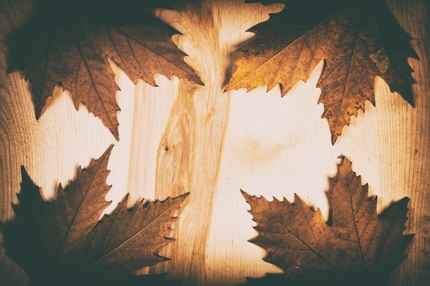 Folhas de outono em fundo de madeira