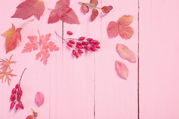Folhas de outono em fundo rosa de madeira