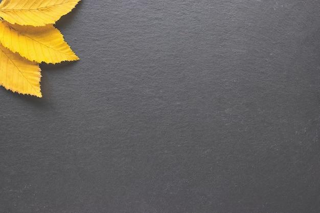 Folhas de outono em um canto em banner de layout de quadro de outono com fundo preto ou modelo de quadro de mensagens