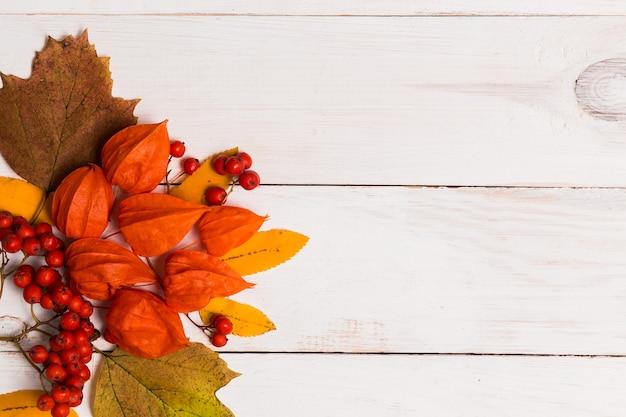 Folhas de outono laranja vermelhas brilhantes, bagas em fundo branco de madeira com espaço de cópia, vista superior