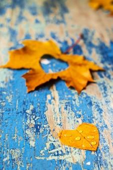 Folhas de outono na mesa ciano de madeira do grunge