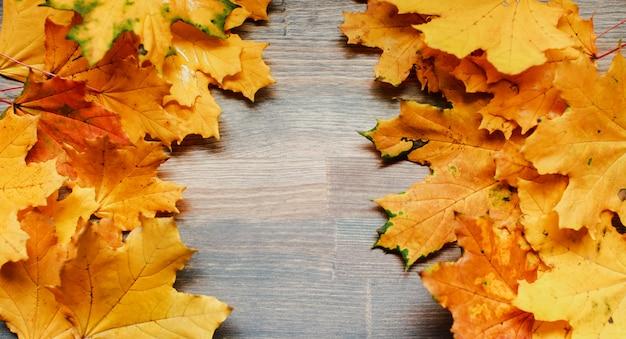 Folhas de outono na mesa
