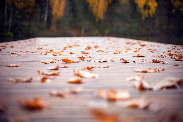 Folhas de outono no caminho de madeira. folhas de outono no antigo fundo listrado de madeira