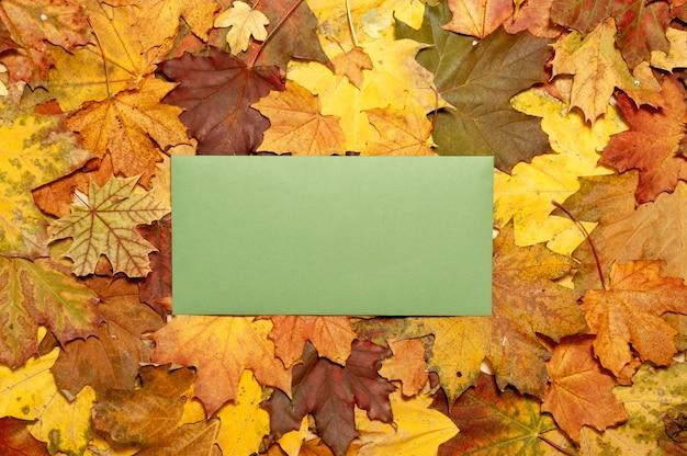 Folhas de outono postal com maple marrom e amarelo