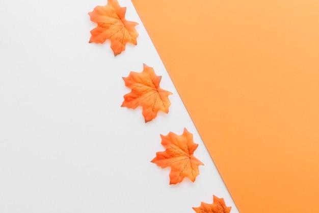 Folhas de outono que colocam na superfície dividida