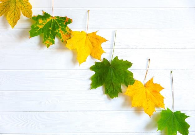 Folhas de outono reais deitado em fileiras sobre fundo de madeira. foto sazonal. cores amarelas e verdes com textura. copie o lugar do espaço. cartão postal de novembro.