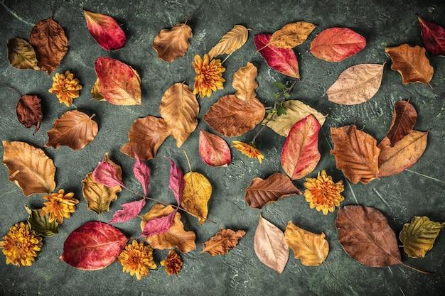Folhas de outono sobre fundo verde vintage