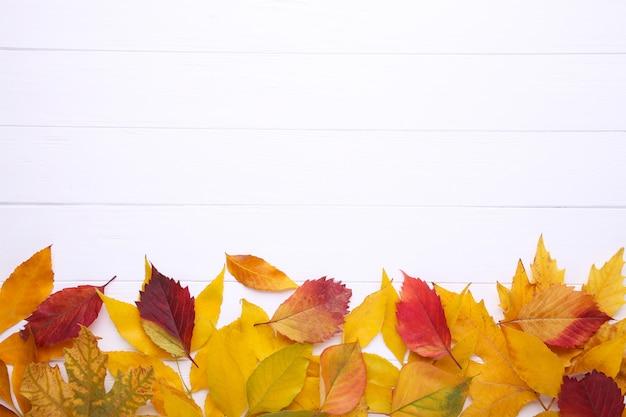 Folhas de outono vermelhas e laranja na mesa branca