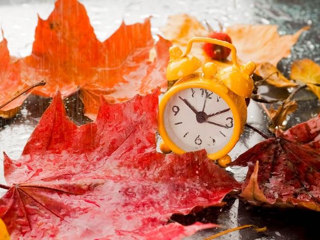 Folhas de outono vermelho e despertador com gotas de chuva