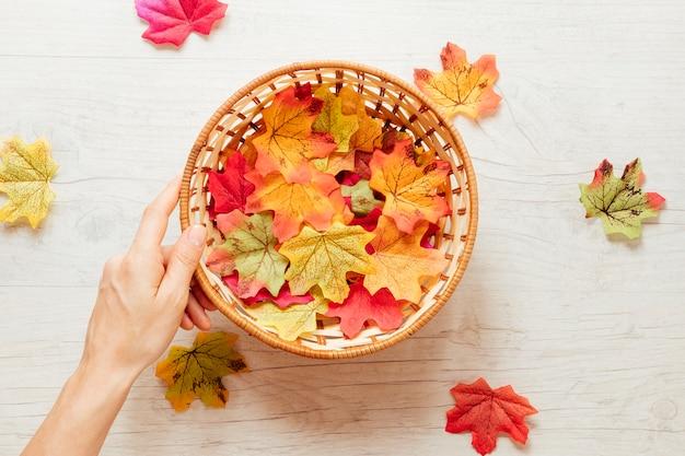 Folhas de outono vista superior em uma cesta
