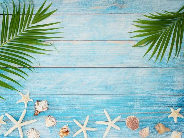 Folhas de palmeira com conchas, estrelas do mar.