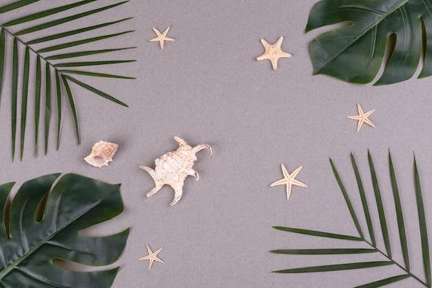 Folhas de palmeira, conchas e estrelas do mar em uma superfície colorida