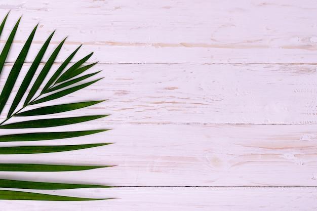 Folhas de palmeira de coco em madeira branca