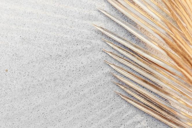 Folhas de palmeira douradas em um recurso de design de fundo de concreto cinza