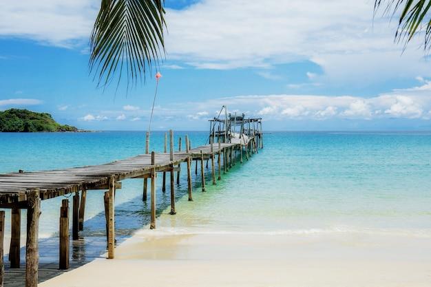 Folhas de palmeira e ponte de madeira na praia para o céu com a luz solar.