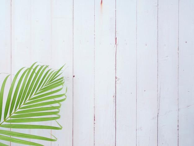 Folhas de palmeira em branco de madeira.