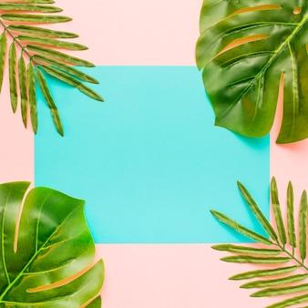 Folhas de palmeira sobre um fundo colorido pastel e uma folha de papel