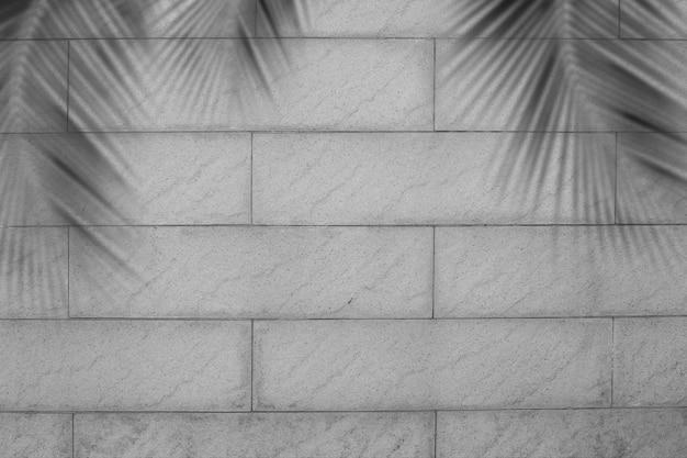 Folhas de palmeira sombra em tijolo preto e branco e blured. silhueta coco na exibição de cimento escuro de estrutura com espaço livre. novo design para o conceito de natureza de verão de férias tropicais de viagens turísticas