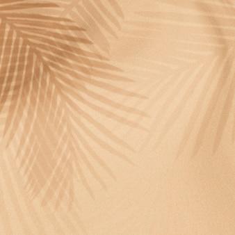 Folhas de palmeira sombra em um bege