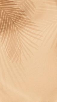 Folhas de palmeira sombra sobre fundo bege