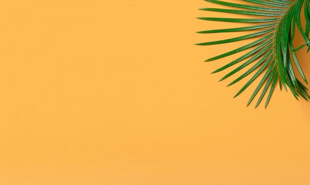 Folhas de palmeira tropical em fundo amarelo. natureza mínima. verão denominado. postura plana com espaço de cópia. padronizar. o conceito de viagens, férias, estilo de vida