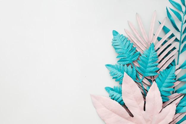 Folhas de palmeira tropical em fundo branco com copyspace