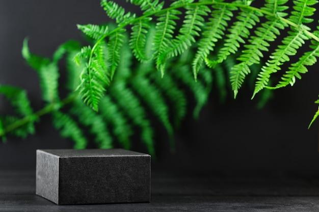 Folhas de palmeira tropical em fundo escuro. carrinho preto para cosméticos e produtos em fundo natural. anúncio. estilo de maquete, copie o espaço. banner do produto. eco-amigável. conceito de natureza e ecologia.