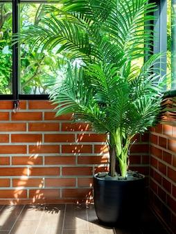 Folhas de palmeira tropical verde em vaso de cerâmica preta no piso de parquet no canto da sala no fundo da parede de tijolo com janela de vidro e luz solar do lado de fora, estilo vertical.