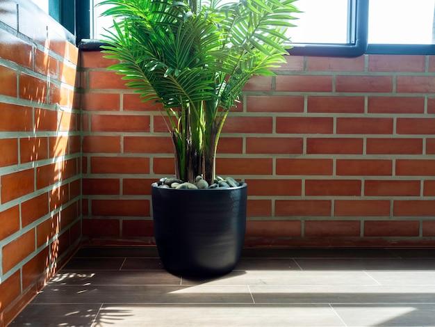 Folhas de palmeira tropical verde em vaso de cerâmica preta no piso em parquet no canto da sala no fundo da parede de tijolo com janela de vidro e luz solar do lado de fora.