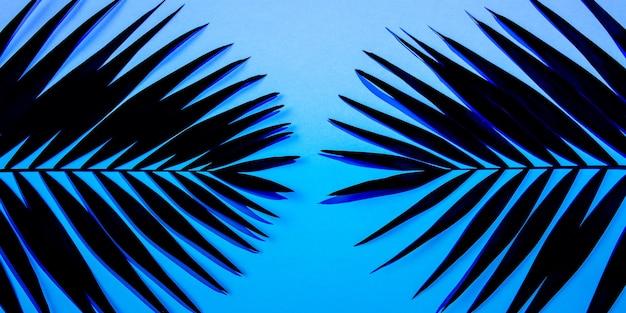 Folhas de palmeira tropical verde escura isoladas em fundo gradiente de azul roxo. design para cartões de convite, folhetos. modelos de design abstrato para cartazes, capas, papéis de parede com copyspace para texto.