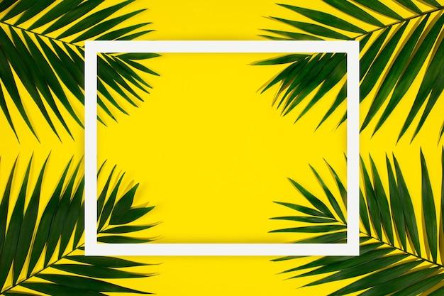 Folhas de palmeira tropical verde exótica isoladas em fundo amarelo com moldura geométrica branca