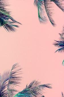 Folhas de palmeira verde tropical em fundo rosa