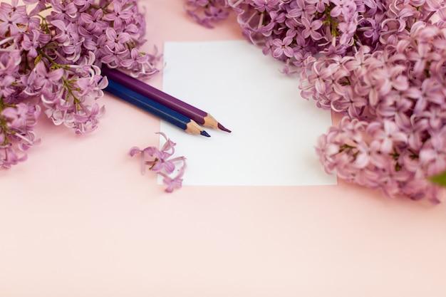 Folhas de papel branco limpo e flores da primavera lilás
