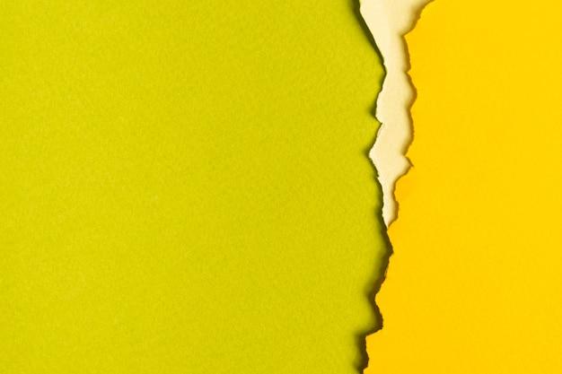 Folhas de papelão tonificado verde com espaço de cópia