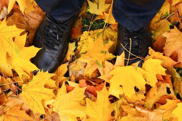 Folhas de pernas femininas em botas nas folhas de outono de bordo amarelo. sapatos de pés caminhando na natureza. conceito de atividades e passeios de outono. vista do topo.